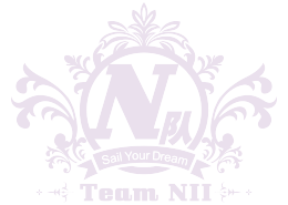 Team n logo