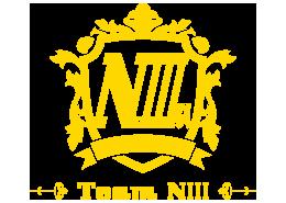 Team niii logo