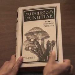Mushroom Minutiae (TV series).