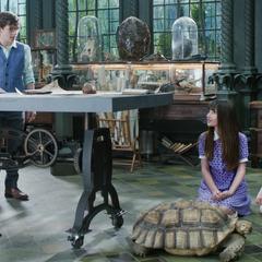 Reptile Room.