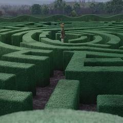 The hedge maze.