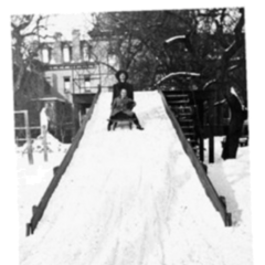A photograph from the sled chase scene.