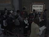 Herring Houdini
