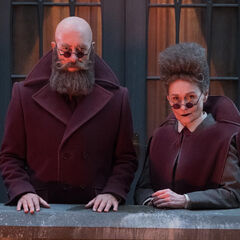 Man with a Beard but No Hair and Woman with Hair but No Beard.