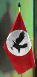 CrowFlag