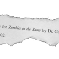 <i>Zombies in the Snow</i> screenplay.