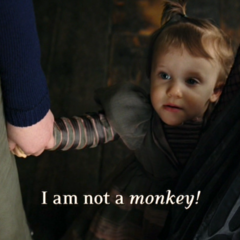 I am <i>not</i> a <i>monkey!</i>