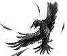 Vfd crow-0