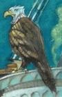 V.F.D. Eagle