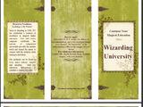 Wizarding University