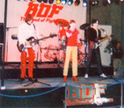 BOF robots