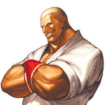 Geese Howard-SVC