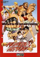 Fighter's History Flyer