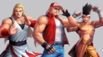 KOF All Star FatalFuryTeam