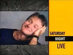 Robin Williams s12
