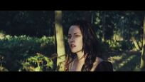 Snow White In The Forest HD