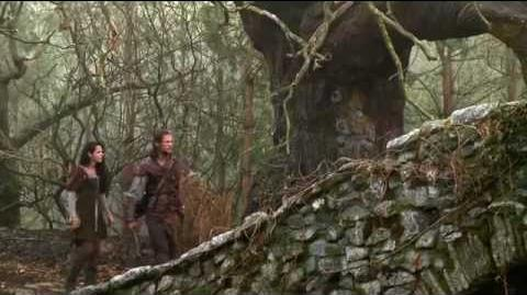 Snow White and the Huntsman B-Roll II