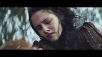 Snow White Cries