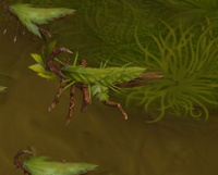 Leaf scorpion