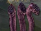 Unit-Creep-Hydra-Default