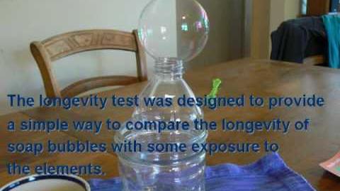 Longevity Test Demo