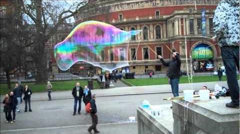 Hyde Park Bubbles.