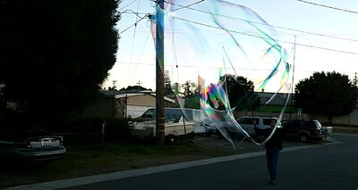 2011 02 26 whale of a bubble