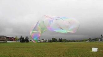 Bubbles in the School Field