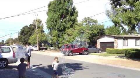 2013 08 17 my first bubble net montage