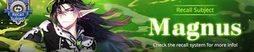 Magnus Recall banner