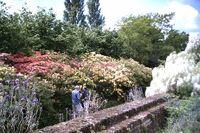 Sissinghurst1