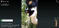 Thumbnail for version as of 16:11, May 7, 2015