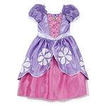 Disney Sofia Costume