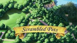 Scrambled Pets titlecard