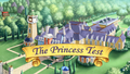 The Princess Test title card.png
