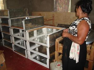 Solar Women of Totogalpa cooker production