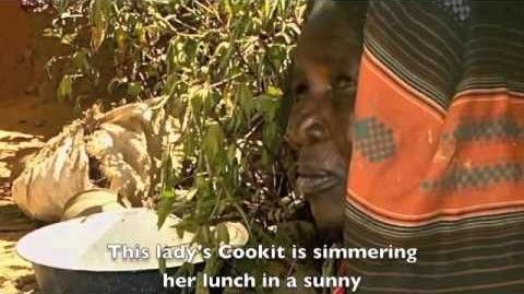 Cooking Traditional African Cornmeal in a Solar Cooker (Filmed in Chad in 2009)-0