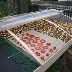 Small scale solar food dryer.