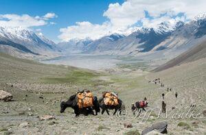 Jeff Waalkes Afghan valley , 10-18-12