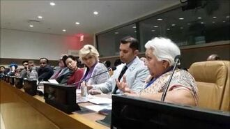 Dr. Mrs. Janak Palta McGilligan at the UN July 2017
