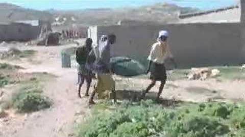 Somalia's solar cooking village