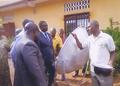 Association Des Volontaires Guineens Pour l' Environnement, Guinea, 11-30-15.png
