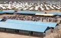 Kakuma Surakumbh aerial 2, 5-8-17.png