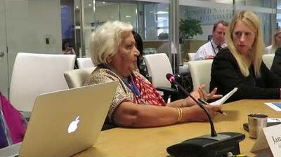 Janak Palta McGilligan speaks at the United Nations 18 July 2017