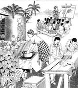 Solar cooking in developing countries
