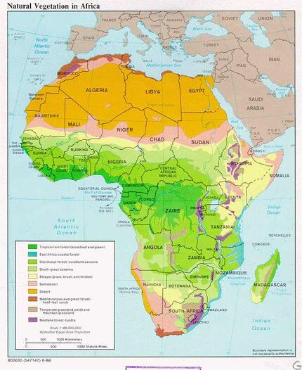 Natural vegitation in Africa