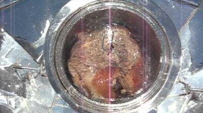 Rouelle de porc solaire avec le Parvati Solar Cooker