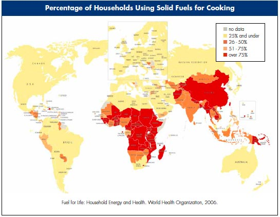 Percentage of households using solid fuel 2006