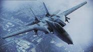 F-14A (Arrows)