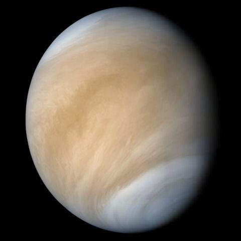 File:Venus.jpg